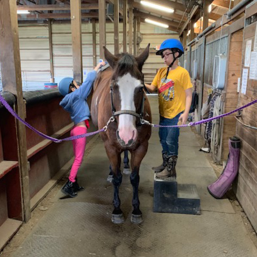Equestrian Center at Beverly Farm Summer Riding Camps. Two children work together to groom a horse.