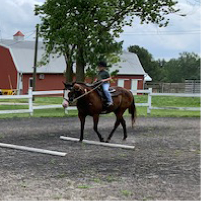 Equestrian Center at Beverly Farm Summer Riding Camps. Camper on horseback traversing low obstacles in the outdoor arena.