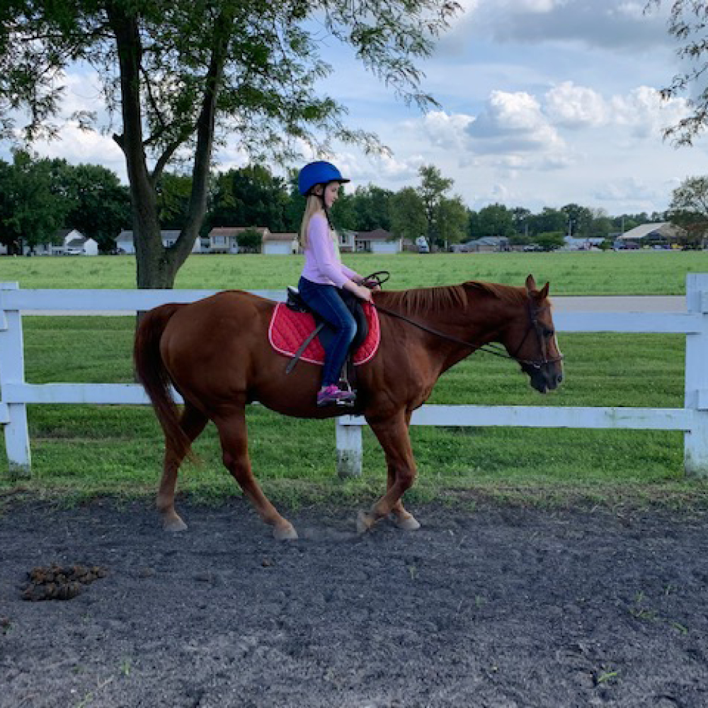 Equestrian Center at Beverly Farm Summer Riding Camps. Girl on horseback riding in our outdoor arena.