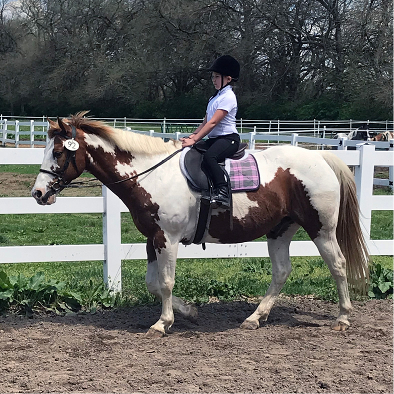 Equestrian Center at Beverly Farm Riding Lessons. Demonstrates her skills in English riding at a show.