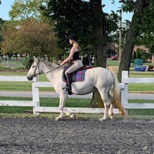 Equestrian Center at Beverly Farm Riding Lessons. Young woman practices her English riding skills outdoors.