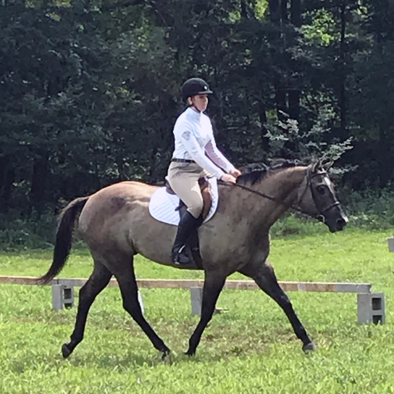 Equestrian Center at Beverly Farm Riding Lessons. Young woman practices her English riding skills dense woods in the background.