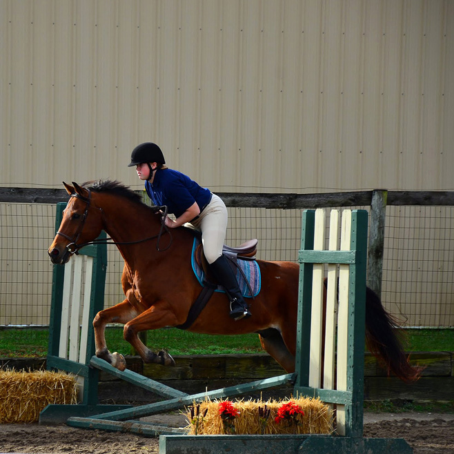 Equestrian Center at Beverly Farm Riding Lessons. Rider practicing fence jumping